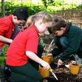I bambini... piccoli produttori di frutta e di ortaggi