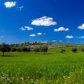 Gal Terre di Murgia presenta i contenuti del Piano di Sviluppo Locale