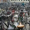 Il 9 maggio si festeggia la prima Giornata Nazionale della bicicletta