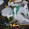 Buste di urina lasciate nei mercati