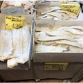 Sagre del fungo cardoncello, sequestrati 200 kg di prodotti ingannevoli