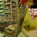 Colletta alimentare, raccolti nella Diocesi 12.663 Kg di alimenti