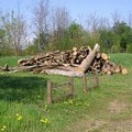 Tentano di rubare 15 quintali di legna, colti in flagrante tre gravinesi