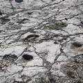 Al via il bando per a conservazione di Cava Pontrelli