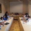 Consiglio metropolitano approva regolamento partecipazione