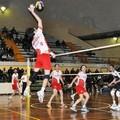 Domar Volley Altamura, salvezza appesa ad un filo