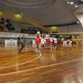 Domar Volley, una domenica da leoni