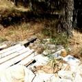 Amianto nel Parco dell'Alta Murgia