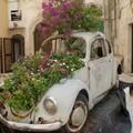L'automobile piena di fiori