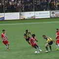 Team Altamura incassa una sconfitta nel Derby murgiano