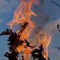 Piccolo incendio nel giardino di una palazzina