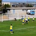 Tre nuovi calciatori per l'Asd Team Altamura