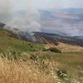 Domenica di fuoco, bruciano 80 ettari