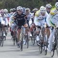 Ciclismo, anche ad agosto in sella