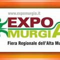 Expomurgia 2014, una nuova location per l'edizione 2014