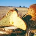 Aumento del prezzo del pane, la Confconsumatori risponde