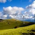 Impianti eolici ad Altamura e Gravina in zona protetta