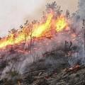 Nuovo incendio in località Lamalunga
