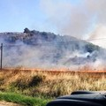 Incendi: s.o.s. dal territorio dell'Alta Murgia