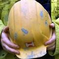 Cantieri di Cittadinanza: attivati 11 progetti