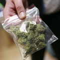 10 kg di marijuana sequestrati dai Carabinieri