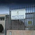 Al termine i lavori di risanamento del Mattatoio comunale
