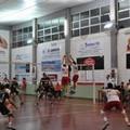 Murgia Sport Altamura: tutto pronto per la semifinale