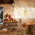 Uno speciale week-end al Museo del Pane Forte
