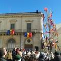 """Celebrazioni storiche, piantato un  """"albero della libertà """""""