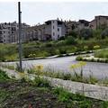 """Trasformare Parco San Giuliano in un  """"eco-quartiere """""""