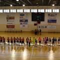 Pellegrino Sport, ko casalingo contro una cinica Futsal Barletta