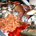 Pesce dopato, un'inchiesta partita dal 2009
