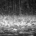 Aggiornamento meteo: allerta arancione nella zona murgiana