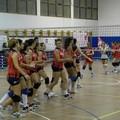 Torna il successo in casa Leonessa Volley Altamura