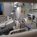 Due aziende altamurane realizzeranno ospedale Covid alla Fiera del Levante