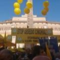 Coldiretti: oltre 300 incidenti causati da cinghiali in Puglia