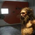 Giornate europee dell'archeologia, tour virtuale all'Uomo di Altamura