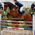 Equitazione, ad Altamura ritorna il salto ad ostacoli