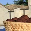 """Speciale """"I piatti della tradizione"""": Ricetta Dolce """"Sasanello"""""""