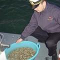 Controlli della Guardia di Finanza sul litorale barese