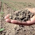 Consumo suolo: in fumo in 1 anno 410 ettari +8,35%;
