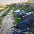 Abbandono di rifiuti, 50 multe in quattro mesi