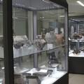 Cultura: Museo Archeologico Statale riduce gli orari