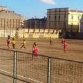 Calcio, bilancio in rosso per le altamurane