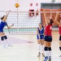 La Leonessa k.o. contro il Pharma Volley Giuliani