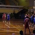 Virtus Basket Altamura: è ufficiale, è crisi