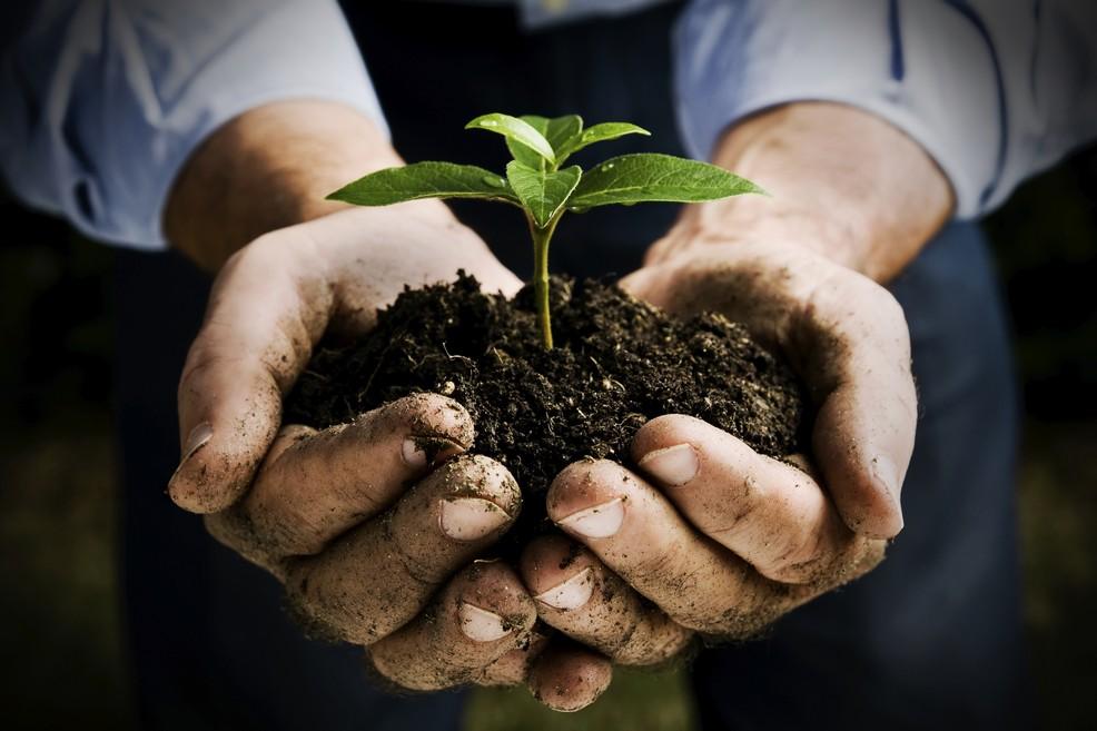Al via il bando per i giovani in agricoltura