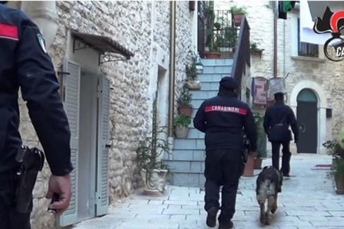 Carabinieri con cane antidroga