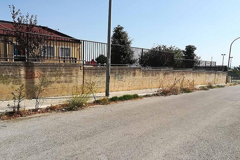 Erba alta all'ingresso della scuola dell'infanzia Salvatore Livrieri