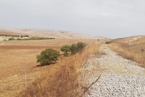Escursione Murgia